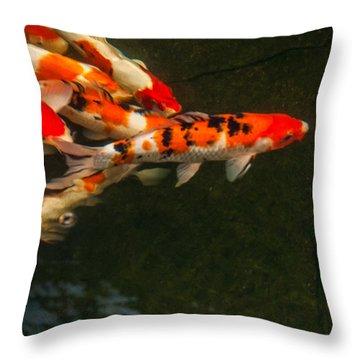 Follow The Leader Throw Pillow