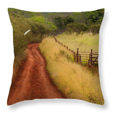 Follow The Red Dirt Road Throw Pillow