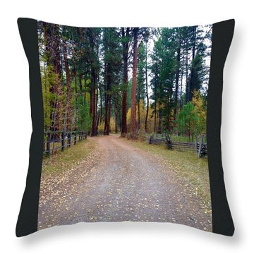 Follow The Road Less Traveled Throw Pillow by Jennifer Lake
