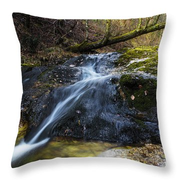 Throw Pillow featuring the photograph Follow The Stream by Yuri Santin
