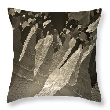 Throw Pillow featuring the photograph Follow Us by Olimpia - Hinamatsuri Barbu