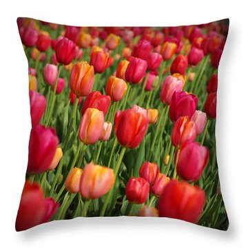 Following The Crowd Throw Pillow by Linda Mishler