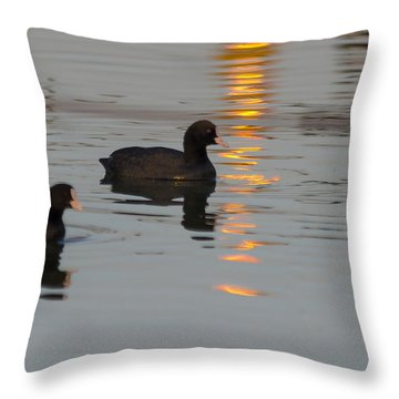Following The Gold Line Throw Pillow