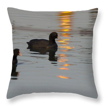 Following The Gold Line Throw Pillow by Arik Baltinester