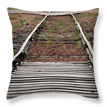 Following The Tracks Throw Pillow by Monte Stevens