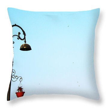 Fond Memories Throw Pillow by Prakash Ghai
