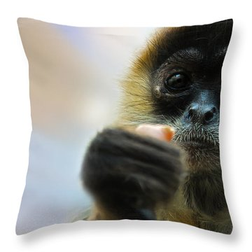 Throw Pillow featuring the photograph Food Sharing by Christine Sponchia