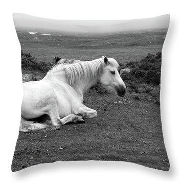 Fooggy Day Roundstone Throw Pillow