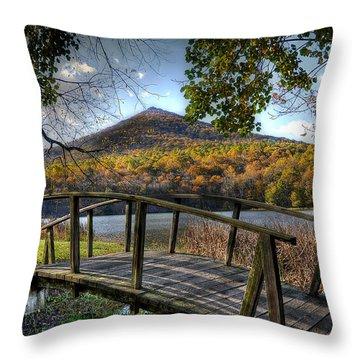 Foot Bridge Throw Pillow by Todd Hostetter