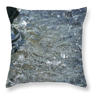 Foot Of The Fountain Throw Pillow