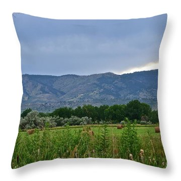 Foothills Of Fort Collins Throw Pillow