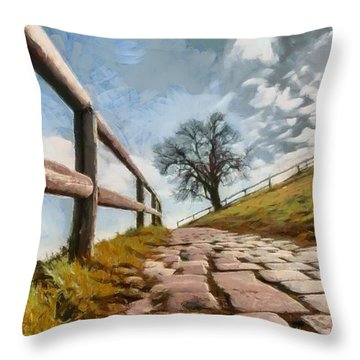 Footpath Throw Pillow by Sergey Simanovsky