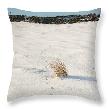 Footprints In The Snow II Throw Pillow