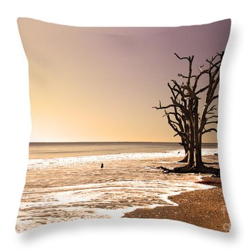 For Just One Day Throw Pillow