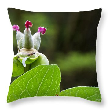 For Mothers Day Throw Pillow