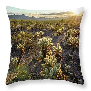 Sea Of Cholla Throw Pillow