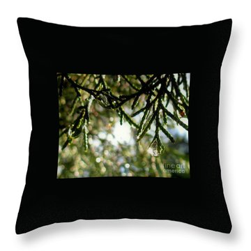 For The Love Of Bokeh 2012 Throw Pillow