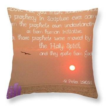 For We Were Not Making Up Clever Throw Pillow