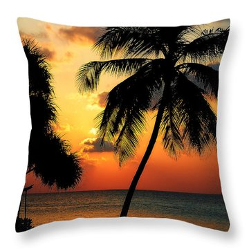 For You. Dream Comes True. Maldives Throw Pillow by Jenny Rainbow