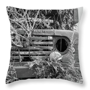 Ford Forgot In Nature Throw Pillow
