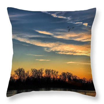 Ford Lake Sunset Throw Pillow by Pat Cook