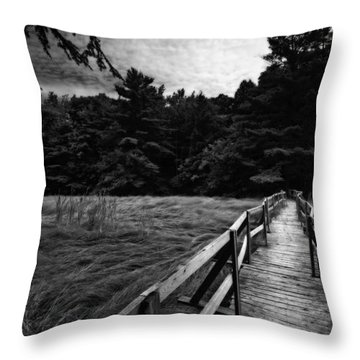 Fore River Marsh Throw Pillow