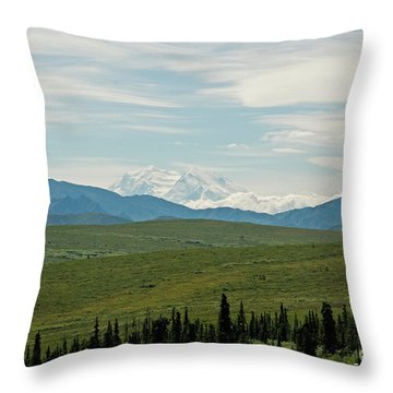 Foreground And Mountain Throw Pillow