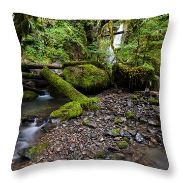 Forest Adventures Throw Pillow