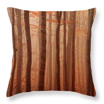 Forest Barcode Throw Pillow by Evgeni Dinev