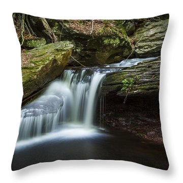 Forest Breeze Throw Pillow