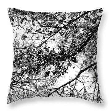 Forest Canopy Bw Throw Pillow