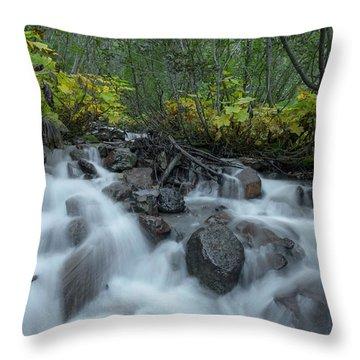 Forest Cascades Throw Pillow
