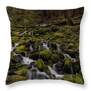Forest Cathederal Throw Pillow by Mike Reid