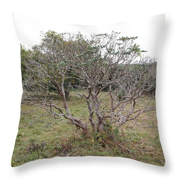 Forest Character Tree Throw Pillow