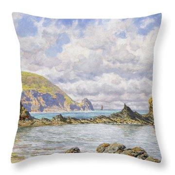 Forest Cove Throw Pillow by John Brett