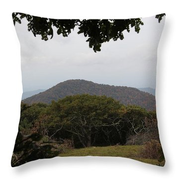 Forest Dark Space Throw Pillow