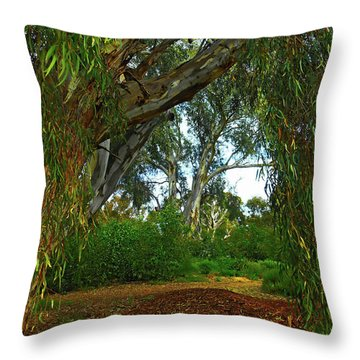 Throw Pillow featuring the photograph Forest Dreams by Mark Blauhoefer