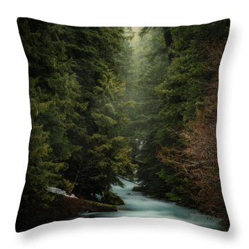 Throw Pillow featuring the photograph Forest Enchantment by Cat Connor