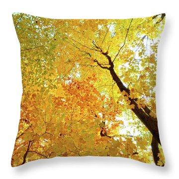 Forest Fall Yellow  Throw Pillow by Lyle Crump