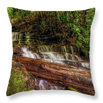 Throw Pillow featuring the photograph Forest Falls by Christopher Holmes