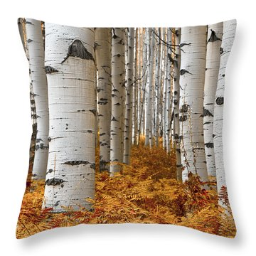 Forest Ferns Throw Pillow by The Forests Edge Photography - Diane Sandoval
