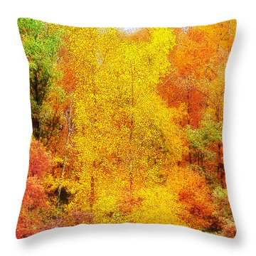 Forest Fire Throw Pillow by Craig Walters