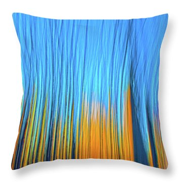 Throw Pillow featuring the photograph Forest Fire by Tony Beck