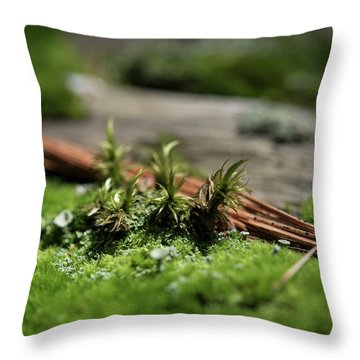 Forest Floor 2 Throw Pillow