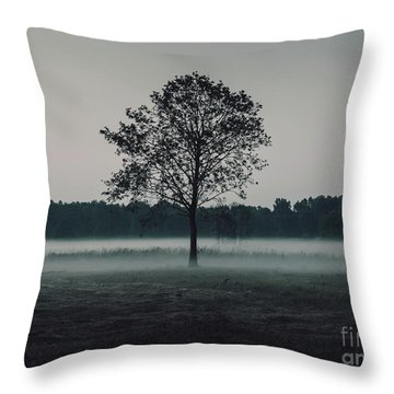 Throw Pillow featuring the photograph Forest Fog by MGL Meiklejohn Graphics Licensing