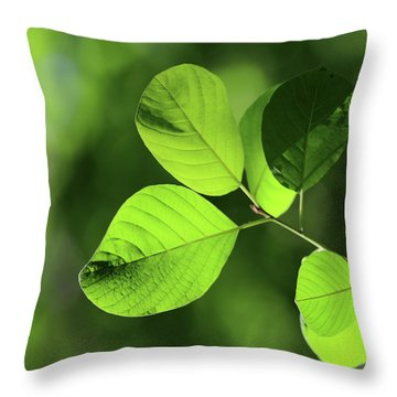 Forest Green 11 Throw Pillow by Mary Bedy