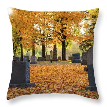 Forest Hill Autumn Morn Throw Pillow