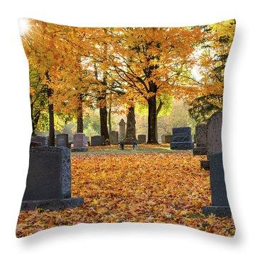 Forest Hill Autumn Morn Throw Pillow