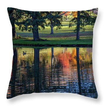 Forest Hill Reflections I Throw Pillow