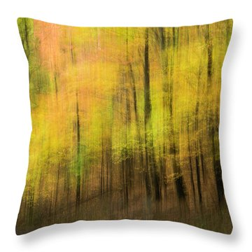 Throw Pillow featuring the photograph Forest Impressions by David Waldrop